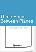 Three Hours Between Planes