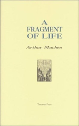 A Fragment of Life