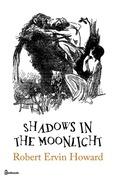 Shadows in the Moonlight