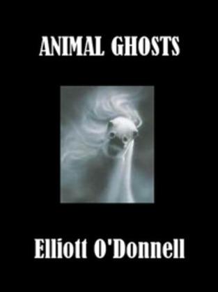 Animal Ghosts