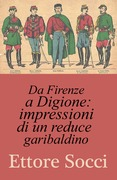 Da Firenze a Digione : impressioni di un reduce garibaldino
