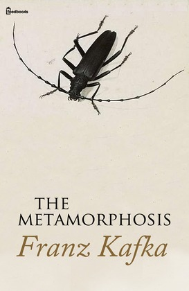 critical essays on metamorphosis