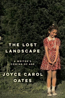Image de couverture (The Lost Landscape)