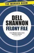 Felony File