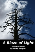 A Blaze of Light: A Book of Poems