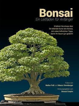Bonsai, Ein Leitfaden für Anfänger