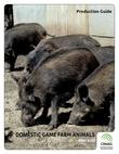 Domestic Game Farm Animals - Wild Boar