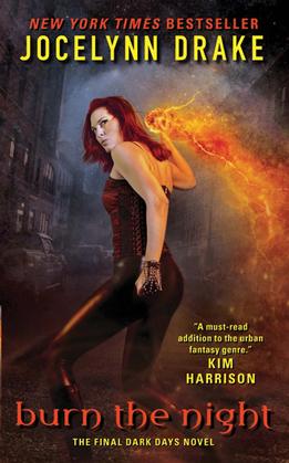 Burn the Night: The Final Dark Days Novel
