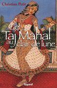 Le Taj Mahal au clair de lune