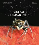 Portraits d'araignées
