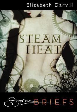Steam Heat (Mills & Boon Spice Briefs)