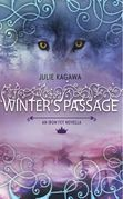 Winter's Passage (The Iron Fey)