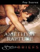 Amethyst Rapture (Mills & Boon Spice Briefs)