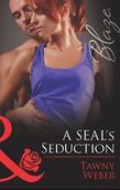 A SEAL's Seduction (Mills & Boon Blaze) (Uniformly Hot!, Book 34)