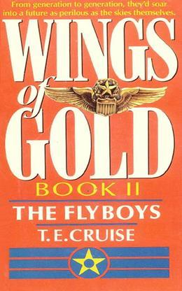 Wings of Gold: The Fly Boys - Book #2: The Fly Boys - Book #2
