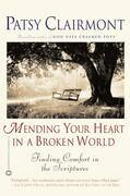 Mending Your Heart in a Broken World: Finding Comfort in the Scriptures