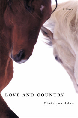Love and Country: A Novel