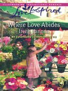 Where Love Abides (Mills & Boon Love Inspired) (Heartland Homecoming, Book 3)