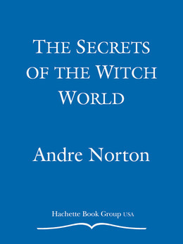 The Secrets of the Witch World