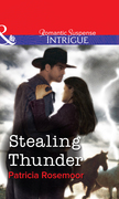 Stealing Thunder (Mills & Boon Intrigue)