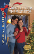 Miracle Under the Mistletoe (Mills & Boon Silhouette)
