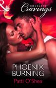 Phoenix Burning (Mills & Boon Nocturne Cravings)
