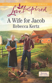 A Wife for Jacob (Mills & Boon Love Inspired) (Lancaster County Weddings, Book 3)