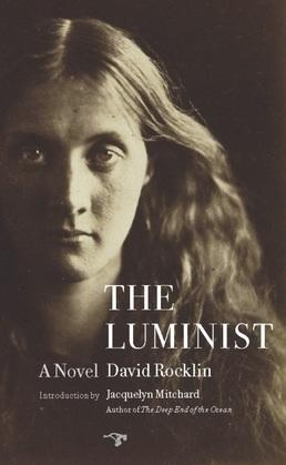 The Luminist: A Novel