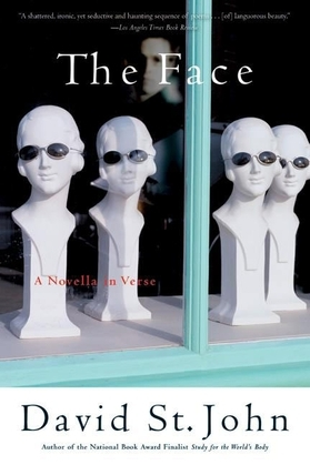 The Face: A Novella in Verse