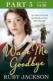 Wave Me Goodbye (Part Three: Chapters 14–20)