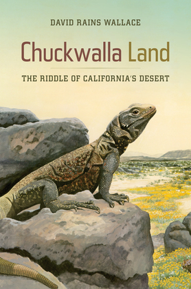 Chuckwalla Land: The Riddle of California's Desert