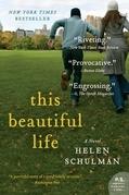 This Beautiful Life: A Novel
