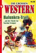 Die großen Western 28