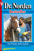 Dr. Norden Bestseller 86 - Arztroman