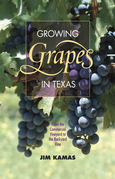 Growing Grapes in Texas