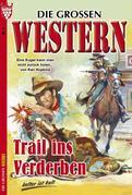 Die großen Western 8