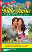 Der Wilde Kaiser 3 - Heimatroman