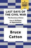 Last Days of the Civil War: The Enormous Silence