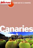 CANARIES Carnet de voyage (avec cartes, photos + avis des lecteurs)