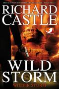 Derrick Storm 2: Wild Storm - Wilder Sturm