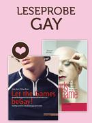 Leseprobe Gay