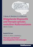 Bildgebende Diagnostik und Therapie spinaler, vaskulärer Malformationen
