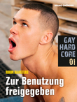 Gay Hardcore Quickie 01: Zur Benutzung freigegeben