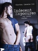 Indecent Exposures