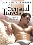 Sensual Travels. Gay Erotic Stories
