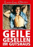 Loverboys Classic 11: Geile Gesellen im Gutshaus