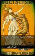 A Critique of Socialism