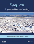 Sea Ice: Physics and Remote Sensing