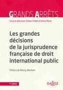Les grandes décisions de la jurisprudence française de DIPublic (N) - 1re édition