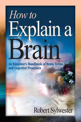 How to Explain a Brain